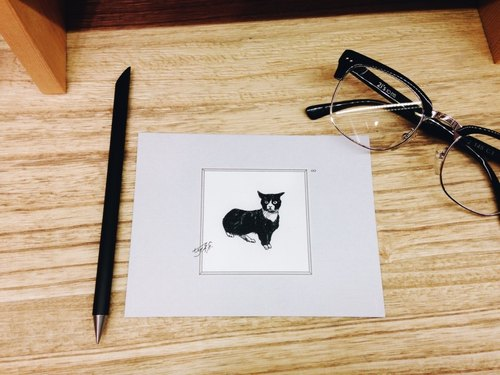 What's that?  Stray Cat: Postcards Cards/ A card= A donation