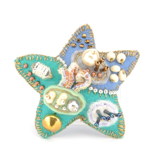 Star brooch (5)