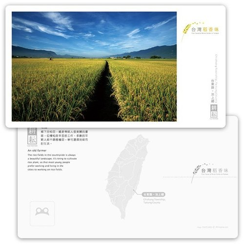 Taiwan rice flavor postcards [farming series] - farmers