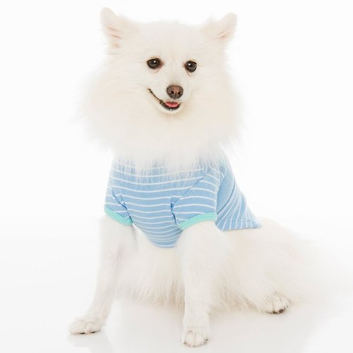 Tee pet clothing spell color sleeve Lackland