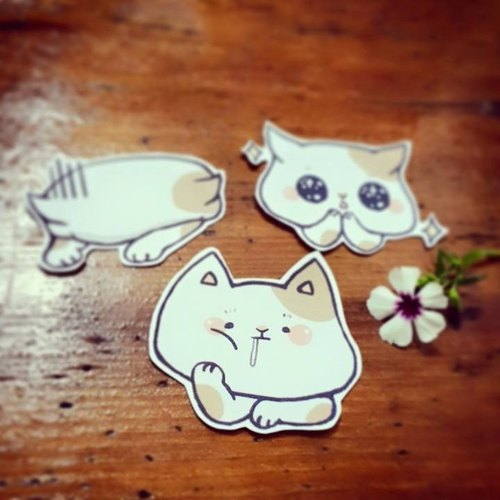 Medium trouble cats sticker set / 3 into
