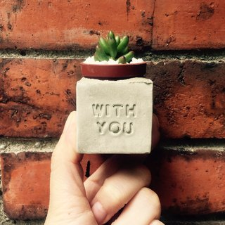 WITH YOU ~ (always with you) magnet potted succulents
