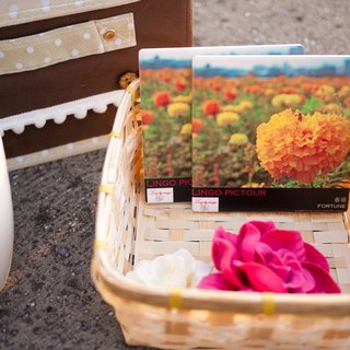 [Wandering] horizon ღ pictour artistic image creation means coasters group