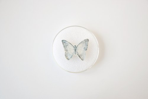 05 pin butterfly specimens