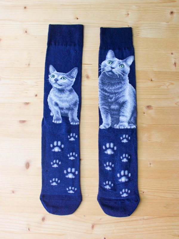 JHJ Design Canada brand series high saturation knitting socks cat Russian Blue (Male) cute kitty cat