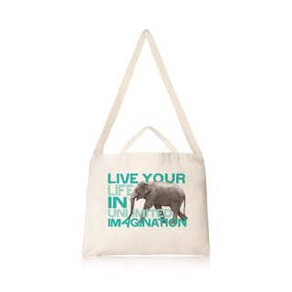 Imagination is your super powers - like horizontal canvas bag