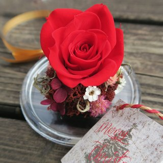 Star red rose garden glass cake cover _ a small card to universal card design
