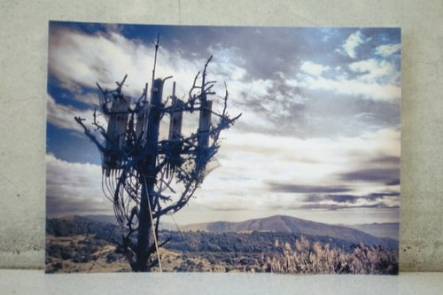 Dead wood & amp; CryWood hand-made postcards [085] ─ view