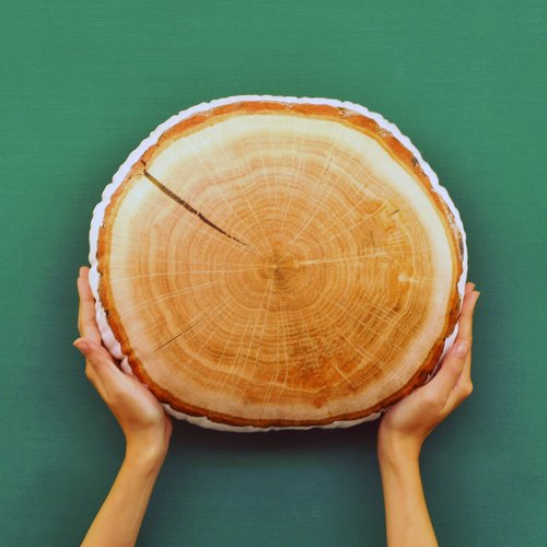 【FunPrint】 Tree Ring Pillow