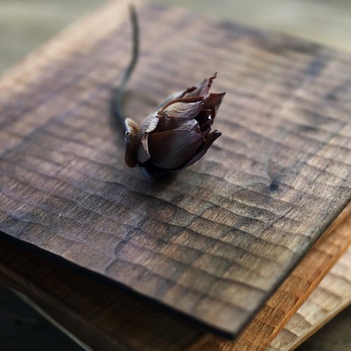 {String} handmade utensils • Living cherry / black walnut eaves tray