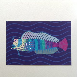 Post card ②Jewelled-blenny