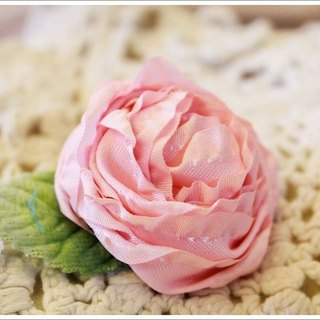 Light sweet lovely pink flowers Spring clip