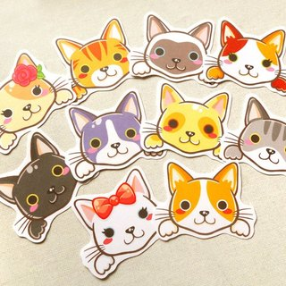 Cat Stickers - 10 Pieces - Non-Waterproof Stickers