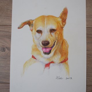 Handmade color pencil pet portrait (pure picture) (no box)