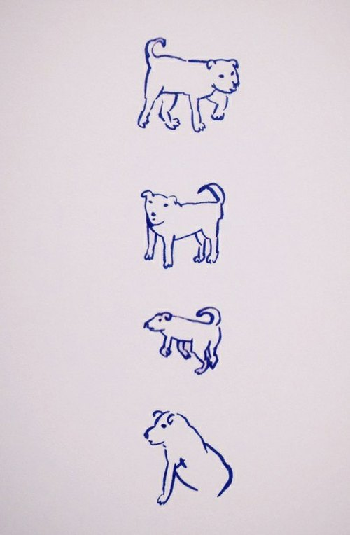 Dogs habits _ Postcards