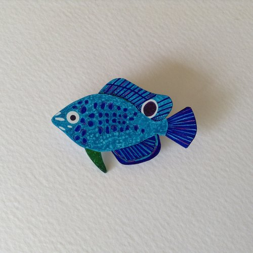Brooch: Samsung black damselfish juvenile Threespot dascyllus (young)