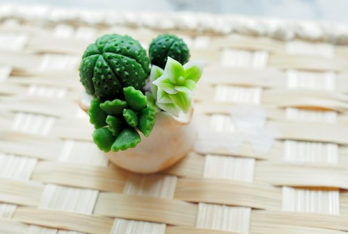 Sweet Dream ☆ mini clay bionic succulents combination of small pots A