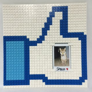 "Facebook ""Like"" Photo Frame puzzle 26x26cm"