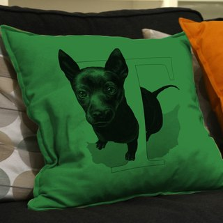 {T} aiwandog small dog, Taiwan: hand-painted letters pillow