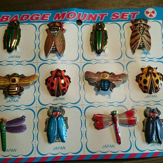 Tin Insect  Brooches