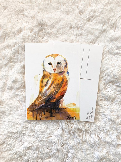 Animal Postcard Owl