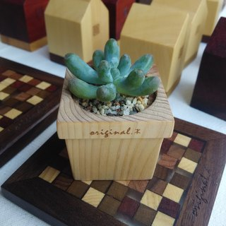 [original.木]Forest Series_Mini Wood Pot (without plants)