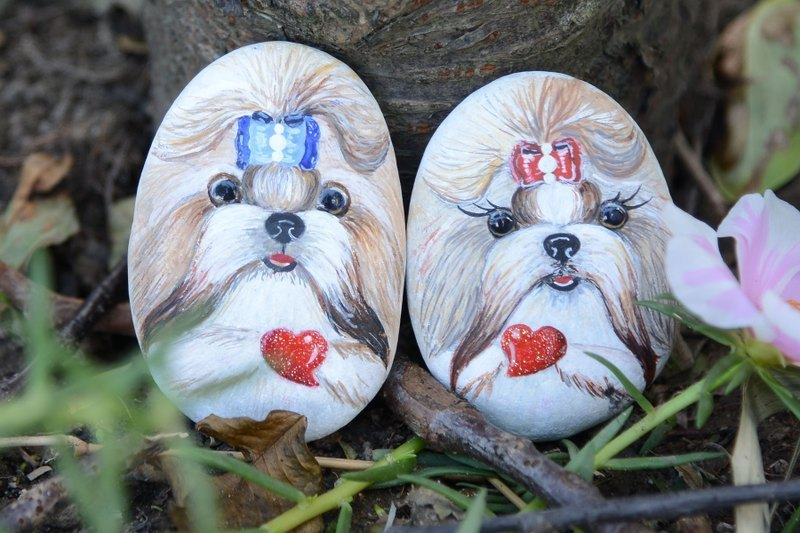 ** ** Painted pet rock paperweight decorations