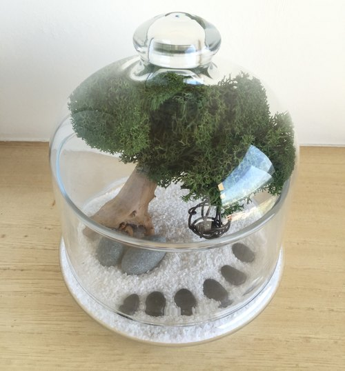 [Pure natural] diy group tree glass bottle tree Driftwood Spa smaller bell was a gift potted plants tree potted