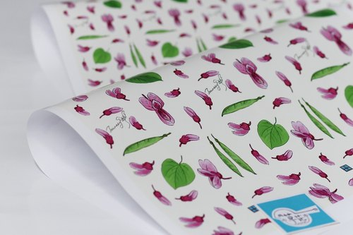 "[Wood] original hand-painted flower of flowers ""Bauhinia"" wrapping paper"