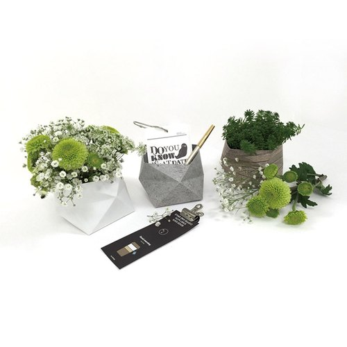 [ImSTONE stone paper gift] Undertaking the new darling of -3 inch pots sets / Pen
