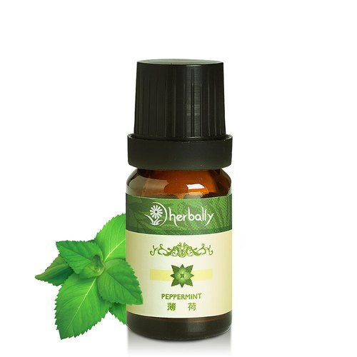 【Herbally Herbal True Feeling】Mint (10ml Essential Oil)(P3971974)