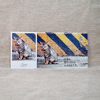 [Postcard] stub - stray - cats slave Recommended section