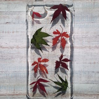 Pressed flower phone case, Apple iphone 6S, Handmade with Nature