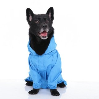 Paris dog rainbow ~ waterproof function waterproof Gore-Tex raincoat fabric SGS test grade nontoxic fresh blue
