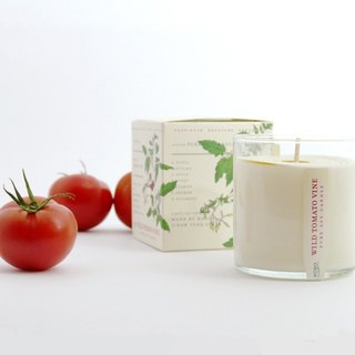 [KOBO] American Soy Essential Oil Candle - Vine Tomato (280g/combustible 60hr)