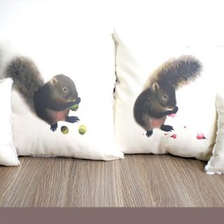 Red belly squirrel pillow four piece set