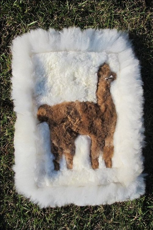 Alpaca 100% wool cushion small square tapestry