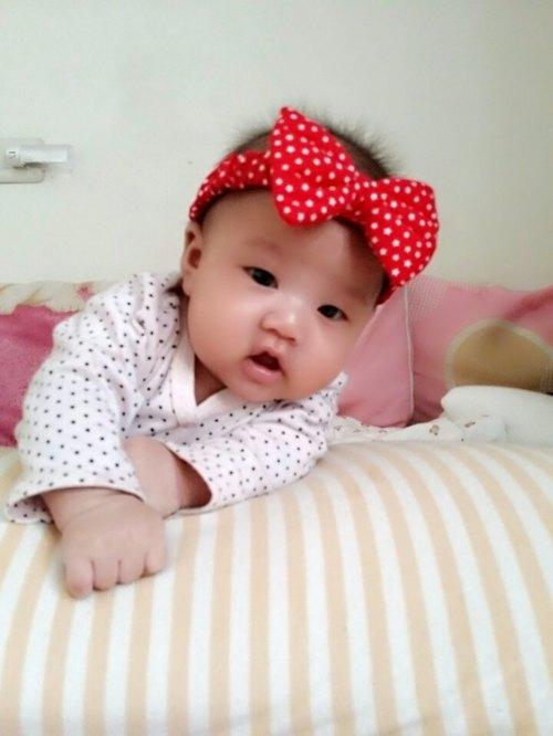 Mini bow headband ~