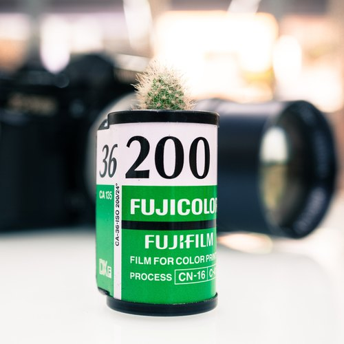Film canister planting - FUJICOLOR 200