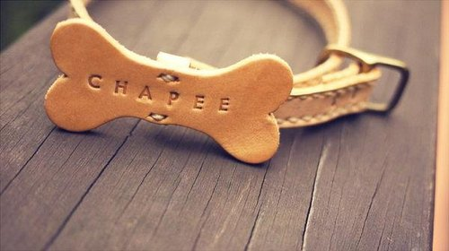 Handmade Leather Dog Collar,Pet Collar | sizeL | Engraving service for FREE.