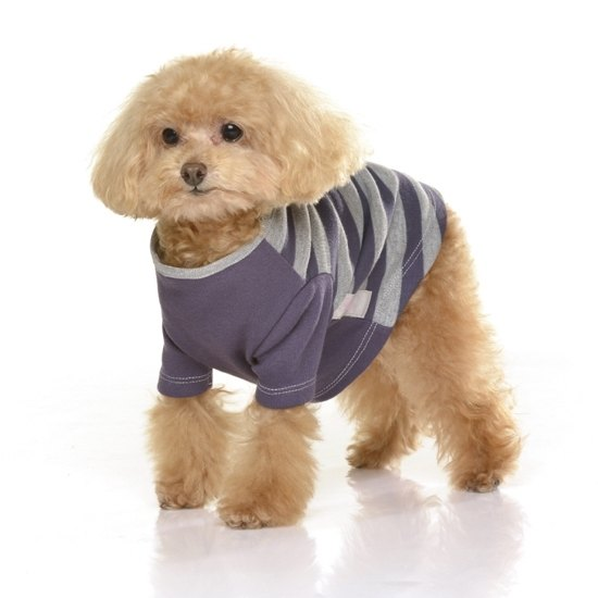 color stitching round neck wide stripe pet clothes - saffron S size