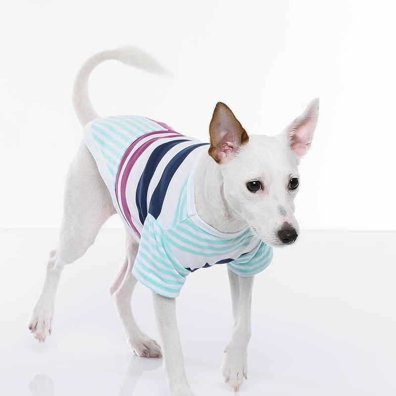 【 Fabrizio 】Changes stripes spell color short sleeve styling pet clothes
