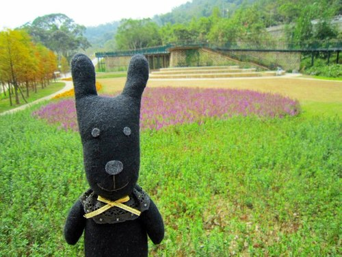 Handmade Lovely Wool Bunny Rabbit , Black & Purple, Gift for birthday or holidays