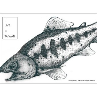 [Jiang Tang - Postcard] salmon (endangered species endemic to Taiwan love Taiwan)