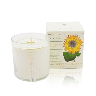 [KOBO - US soybean oil candles - Honey Sunflower (280g / combustible 60hr)