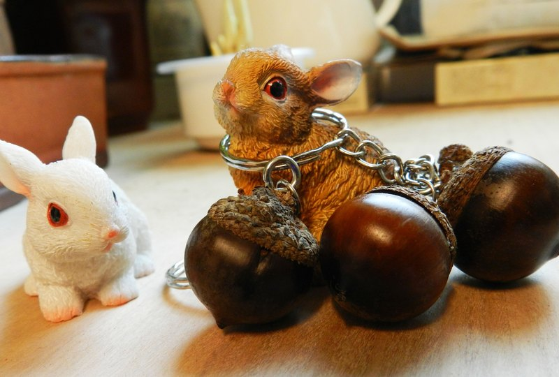 Fat acorn key ring * 1 (excluding rabbit)