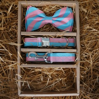 Dog Bow-tie Pink Light-Blue Stripes.