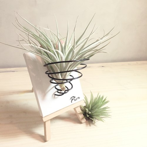[Flora and fauna] empty easel planting small group phoenix
