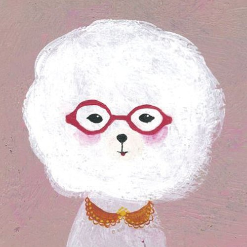 ✪ ✪ cotton Bichon Frise