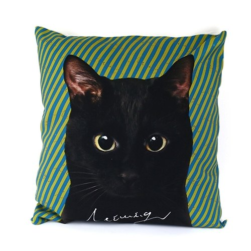{Cat. CATS} We hold firmly the cat illustrations canvas pillow pillowcase black money
